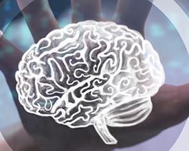 brain_tumors